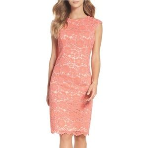 Vince Camuto Lace Bodycon Dress in Pink